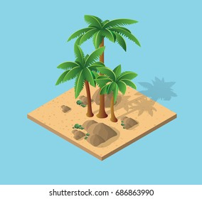 Natural Desert landscape isometric palm trees with tropical land with sand and rocks