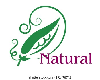 Natural emblem or label with a fresh green pea pod open to reveal the peas with swirling tendrils above the word  Natural