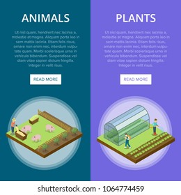Natural farming isometric vertical flyers. Animal breeding and watering plants in greenhouse. Agriculture industry, traditional agrobusiness, countryside farmland, eco products vector illustration.