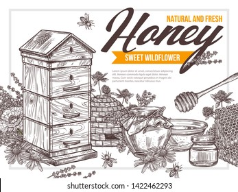 Natural flower floral honey vector drawing poster with wooden hive, pot of sweet dessert, bee, honeycomb, stick. Hand drawb background. Sketch design for beekeeping