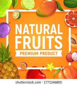 Natural fresh fruits poster, vector pineapple, apple and apricot, lychee, prune and mango. Lime, grapefruit and carambola with pear, feijoa, passion fruit. Exotic tropic fresh orchard farm production