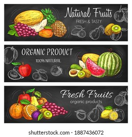 Natural fruits vector sketch pineapple, lemon, apple and grapes with melon. Tropical mango, avocado and watermelon. Hand drawn eco farm assortment pears and apricot with plums and oranges banners set