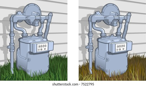 Natural Gas Meter shown rendered with two types of grass depicting seasonal differences.