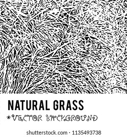Natural Grass vector textured background and eco grunge items for the creation of design banners, music cover, wallpapers,  flyers, websites with grunge bio ideas.