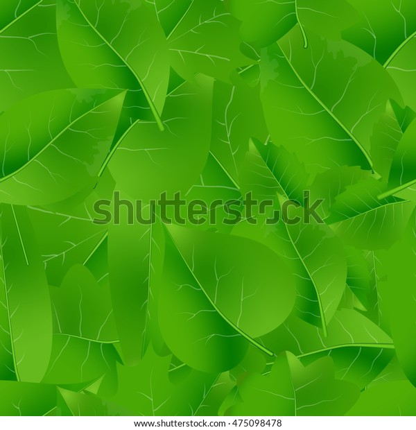 natural green beautiful leaves seamless pattern eps10