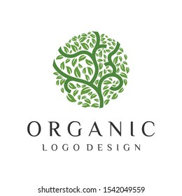 Natural green tree leaf abstract logo vector design templates emblems icon for holistic medicine centers