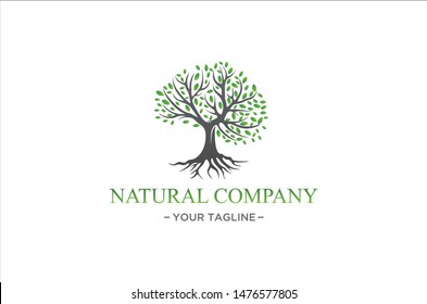 natural herbal tree logo premium vector
