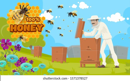 Natural honey production, beekeeping and beekeeper at apiary. Vector apiculture food poster, beekeeper man in uniform and mask extracting honey from beehive, bees on honeycomb and flowers