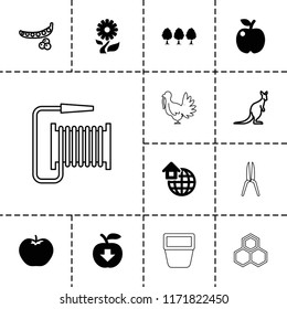 Natural icon. collection of 13 natural filled and outline icons such as apple, global home, peas, cangaroo, apple download, tree. editable natural icons for web and mobile.