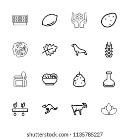 Natural icon. collection of 16 natural outline icons such as wheat, berry, leaf, potato, lemon, cangaroo, goat, seal, plant, bottle. editable natural icons for web and mobile.