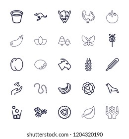Natural icon. collection of 25 natural outline icons such as wheat, nest, peach, banana, cabbage, hand with seeds, goat, cangaroo. editable natural icons for web and mobile.