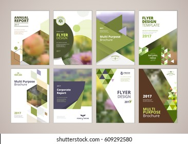 natural organic products brochure cover design stock vector royalty