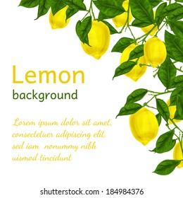 Natural organic ripe juicy lemon tree branch background poster frame template vector illustration