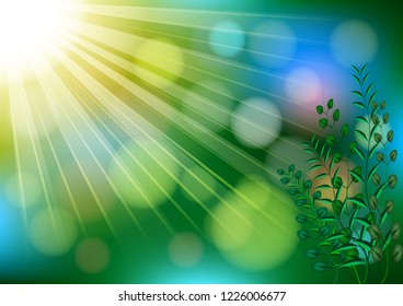 Natural outdoors bokeh realistic background in green and yellow tones with sun rays with green branches in the corner with highlights. Vector illustration