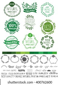 Natural,bio,eco logotype creator.Vector green,ecology logo creator,badges, labels set,ribbons,isolated elements,laurels,frames,lettering titles.Floral Organic design template,menu.Hand drawing stamps