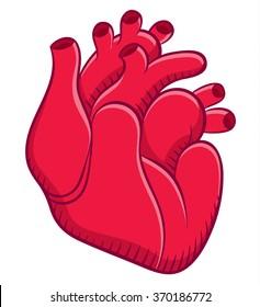 Naturalistic real heart