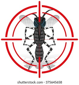 Nature, Aedes Aegypti Mosquito with stilt sights signal or target, Front. Ideal for informational and institutional related sanitation and care