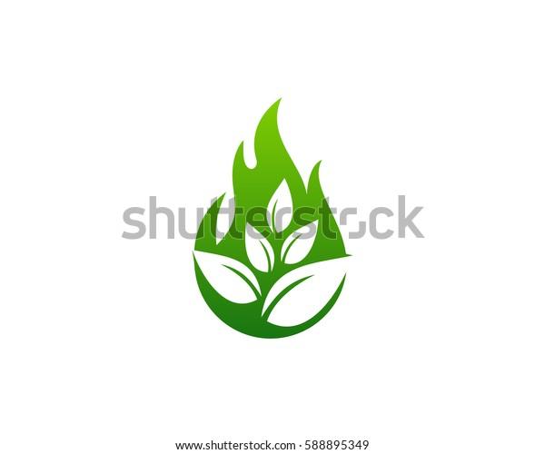 Nature Fire Logo Design Element
