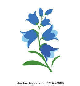 Nature flower bluebell flower, vector botanic garden floral leaf plant.