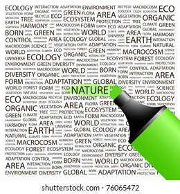NATURE. Highlighter over background with different association terms. Vector illustration.