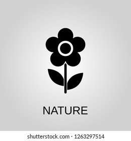 Nature icon. Flower concept symbol design. Can be used for web
