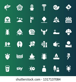 nature icon set. Collection of 36 filled nature icons included Scorpion, Ink, Sack, Eclipse, Sky, Fresh, Water, Campfire, Beetle, Ride, Waterfall, Strawberry, Desert, Blood, Bamboo