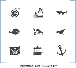 Nature icon set and flatfish with baleen whale, porthole and shark. Tortoise related nature icon vector for web UI logo design.