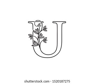Nature letter U leaf icon logo design concept, floral logo U icon design. hand drawn floral with letter.