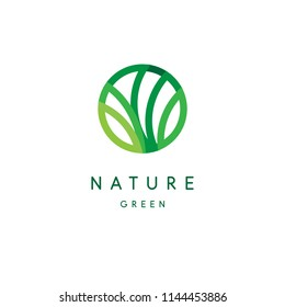 Nature logo, green tropical leaves icon, line stylized, round emblem, modern design, tree foliage logotype template