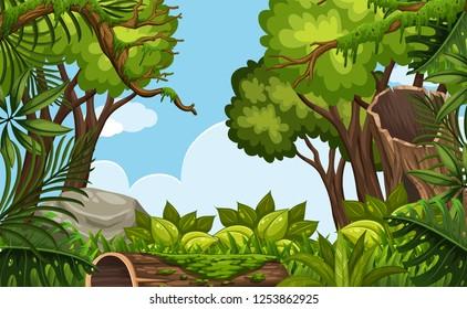 A nature scene background illustration