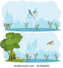 nature scenes. Scene lakes and swamps with living birds. vector