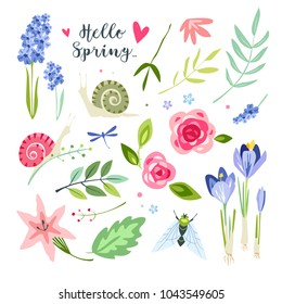 nature spring summer objects collection with nature elements flowers leves