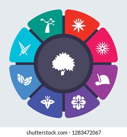 nature vector template for infographics. Business concept with 9 options, steps, parts, segments. Banner infographic cycling diagram, round chart, Beech, Baobab, Astrantia, Aster, Anthurium icons