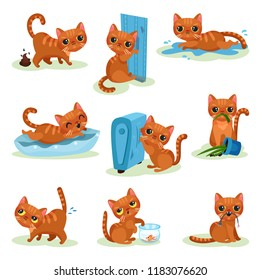 Naughty kitten in different situations, mischievous cute little cat vector Illustrations on a white background