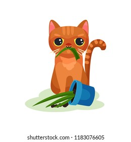 Naughty kitten eating house plant, mischievous cute little cat vector Illustration on a white background