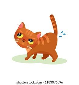 Naughty kitten peeing on the floor, mischievous cute little cat vector Illustration on a white background