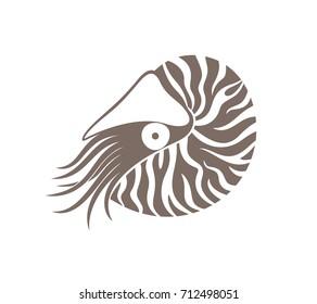 Nautilus  logo. Isolated nautilus on white background. EPS 10. Vector illustration