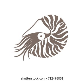 Nautilus  logo. Isolated nautilus on white background