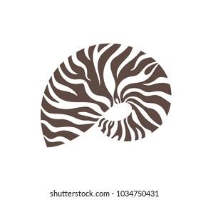 Nautilus shell. Isolated nautilus on white background. EPS 10. Vector illustration