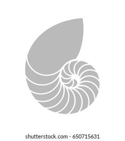 Nautilus shell. Vector illustration