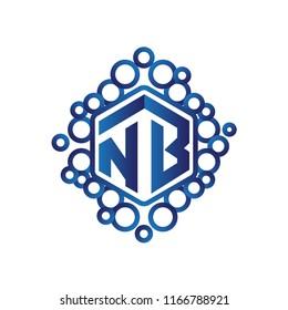 NB Initial letter hexagonal logo vector