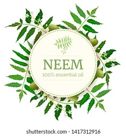 Neem Round Circle badge. leaf branch, flowers and pods. Ayurveda Herb template. Used for alternative medicine, cosmetics, health care product, aromatherapy, enclosure, flyer, flier, text copy space