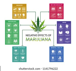 negative effects of marijuana is infographic
