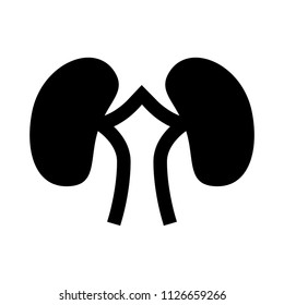 nephrology sign - vector kidney illustration isolated. human body care, medical icon