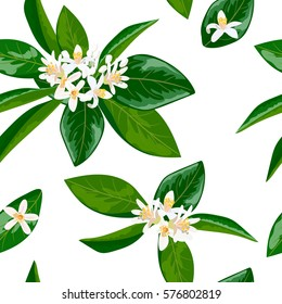 Neroli theme. fleur d'orange, Seamless pattern vector flowers and leaves. Bright and vivid. for decoration, cosmetics, prints, textile, banners, textile,