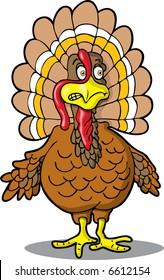 Nervous Turkey