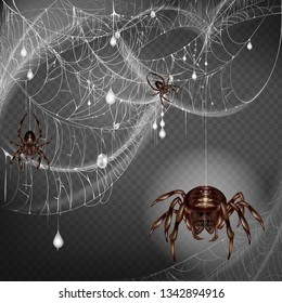 Nest of dangerous and scarifying spiders 3d realistic vector with poisonous big and small arthropods hanging on web string, climbing on lace with hunted and wrapped preys or egg cocoons illustration