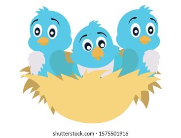 Nest with three pigeon chicks. Cartoon pigeon chicks. Vector illustration of three pigeon chicks