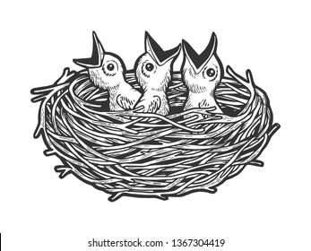 Nestling bird in nest sketch engraving vector illustration. Scratch board style imitation. Black and white hand drawn image.