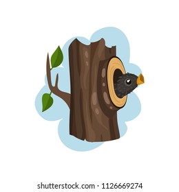 Nestling sitting in hollow tree, hollowed out old tree and cute bird inside vector Illustration on a white background